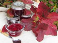 Highbush Cranberry Jelly found on PunkDomestics.com