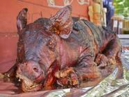 Pigs Get Fat Hogs Go to Slaughter