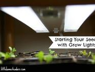 Starting Seeds with Grow Lights found on PunkDomestics.com
