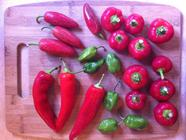 Peppers Come First Hot Sauce found on PunkDomestics.com