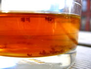 Fend off Fruit Flies from Your Ferments found on PunkDomestics.com