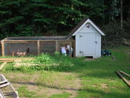 {Backyard Chickens} The Coop!