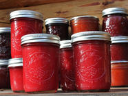 Lowbush Cranberry Applesauce