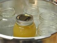 Canning Stock found on PunkDomestics.com