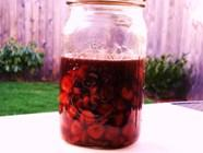 Cherry Bourbon found on PunkDomestics.com