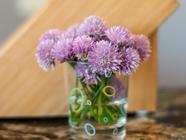Chive Blossom Vinegar found on PunkDomestics.com