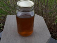 Dandelion Flower Syrup found on PunkDomestics.com