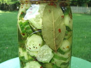 Quick Fridge Pickles