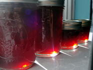 Blood Orange Port Marmalade