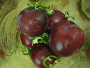 Plums in Jalapeno Honey Syrup