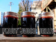Fruit Juice Jelly
