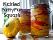 Pickled Pattypan Squash found on PunkDomestics.com