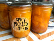 Spicy Pickled Pumpkin found on PunkDomestics.com