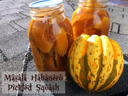 Masala Habanero Pickled Squash found on PunkDomestics.com