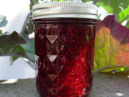 Raspberry and Pom Jam found on PunkDomestics.com