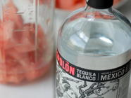 Watermelon-Infused Tequila & Margarita Recipe found on PunkDomestics.com