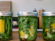 Pickled Romano Beans with Rosemary and Lemon found on PunkDomestics.com