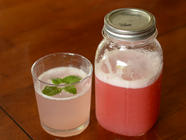 Rhubarb and Preserved Lemon Syrup