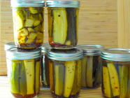 Easy and Quick Dill Pickles - Small Batch found on PunkDomestics.com
