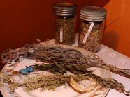 How to Dry Your Herbs from the Garden
