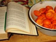 Escoffier's Apricot Jam found on PunkDomestics.com