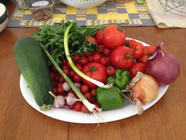 Whatever is Left in The Garden Salsa found on PunkDomestics.com