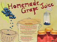 Homemade Grape Juice found on PunkDomestics.com