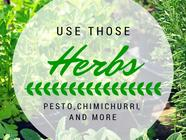 Use Those Herbs! found on PunkDomestics.com