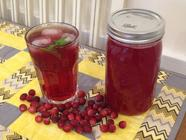 How to Make and Can Cranberry Juice found on PunkDomestics.com