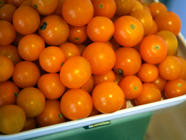 Tomato-Basil-Lemon Jam found on PunkDomestics.com