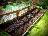 D.I.Y. Covered Raised Bed (Mini Polytunnel)