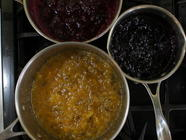 Experimental Jams: Safely Create New Recipes