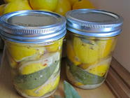 What to Do with Preserved Lemons found on PunkDomestics.com