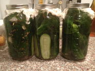 Pickle Time