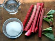 Rhubarb Syrup