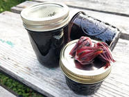 Rosella, Blueberry, and Ginger Jam found on PunkDomestics.com