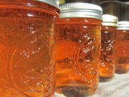 Green Apple Pectin Stock Jelly found on PunkDomestics.com