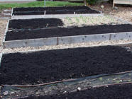 Getting Ready to Garden: Preparing Beds