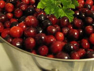 Fresh Cranberry Juice found on PunkDomestics.com