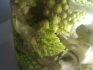 Fractal Pickles found on PunkDomestics.com