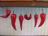 Drying Whole Chili Peppers