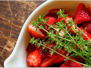 Strawberry-Thyme Margaritas found on PunkDomestics.com