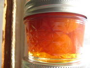 Candied Calamondins found on PunkDomestics.com