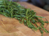 Eating Hop Shoots found on PunkDomestics.com
