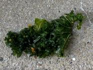 Kale Chips  found on PunkDomestics.com