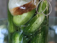 Hungarian Kovaszos Uborka (Sour Pickles) found on PunkDomestics.com