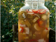 Lacto-fermented Cajun Pickles found on PunkDomestics.com
