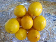 Meyer Lemon Curd found on PunkDomestics.com