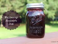 Mulberry - Rhubarb Jam found on PunkDomestics.com