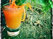 Carrot Top Cocktail found on PunkDomestics.com